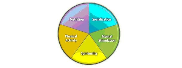 The Components of a Healthy lifestyle