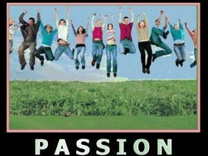 Without Passion you are Just an Underdeveloped Force with Latent Possibilities