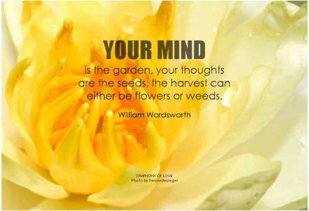 Remove Negative Thoughts