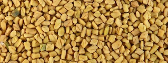 The Benefits of Fenugreek for Women