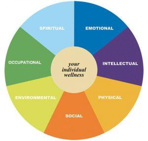20100427232317_Health_WellnessWheel