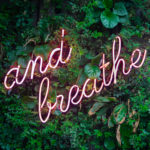 Neon Sign Saying And Breath In A Garden Hedge